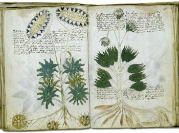 Voynich: El Manuscrit impossible