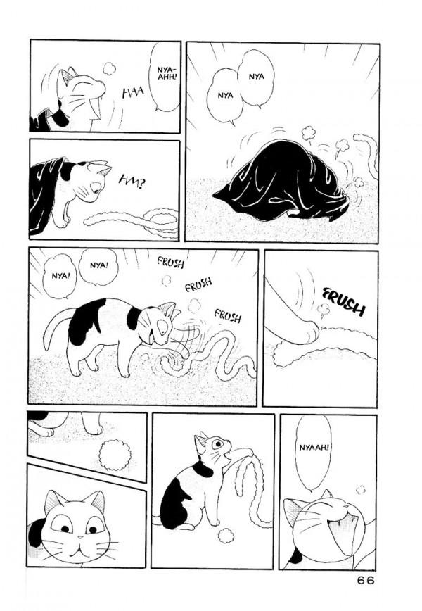 Kanata, Konami La abuela y su gato gordo