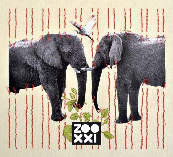 ZOOXXI