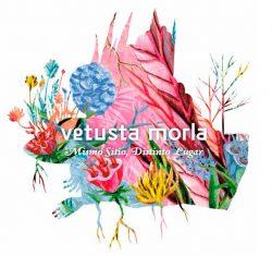 Mismo sitio, distinto lugar  Vetusta Morla