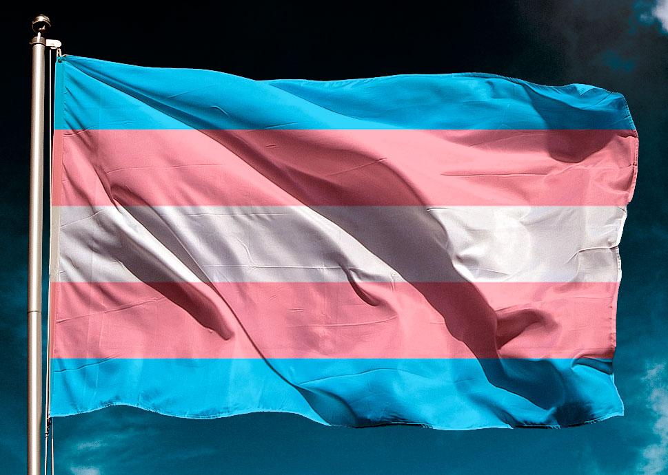 Celebrant l'existència trans. Dia Internacional de la Visibilitat Trans