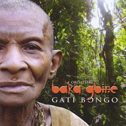 Gati bongo Orchestre Baka Gbiné