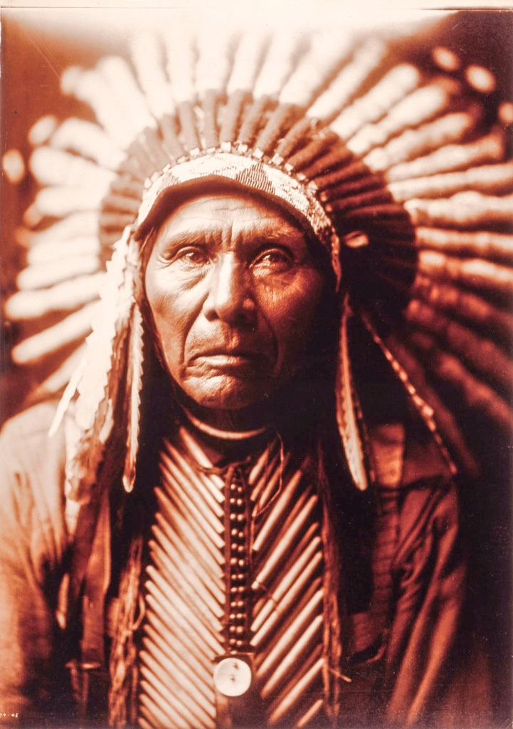 We are part of the earth -Chief Seattle