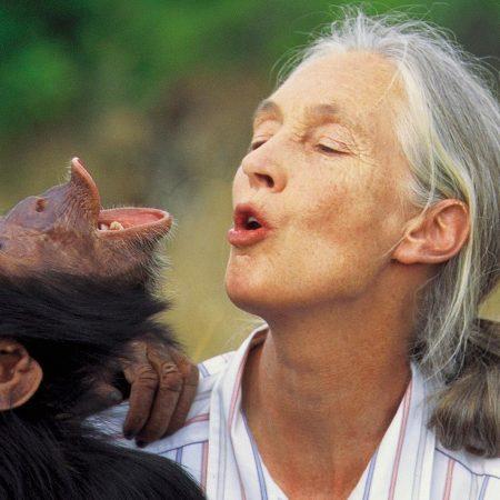 Jane_Goodall